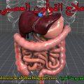 علاج القولون العصبي - الموسوعة الطبية