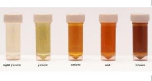 معنى لون البول الأحمر على الصحة - المرسال