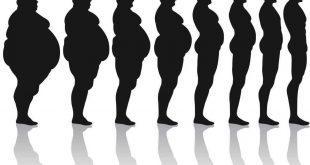 الدهون - انواع الدهون الغذائية واهميتها لصحة الانسان - مجلة رجيم