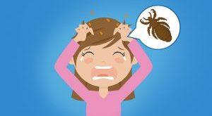 امراض يسببها القمل - المرسال