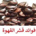 فوائد قشر القهوه جابر القحطاني - الوصفة