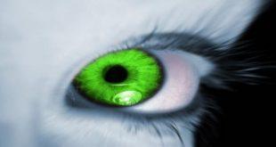قصة جاذبية نجد مع العين والمس
