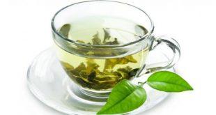 ماهو افضل نوع الشاي الاخضر